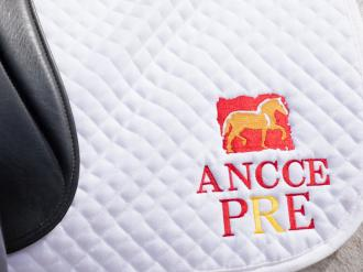 ANCCE | First day for the selection of the PRE Dressage Team to participate at the 2020 World Dressage Championships for Young Horses in Verden