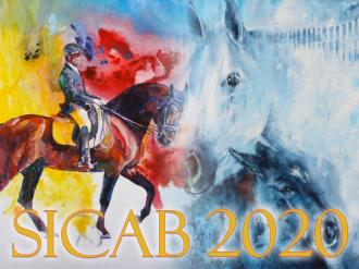 ANCCE | Newsletter 3 · SICAB 2020: Sports
