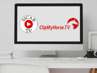 ANCCE | ANCCE and ClipMyHorse joint forces to offer dual and live broadcasts of SICAB 2020