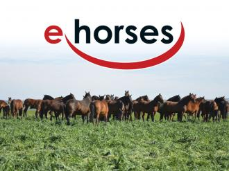 ANCCE | ANCCE Renews its Agreement with ehorses, the Largest Internet Equestrian Marketplace, for Another Two Years